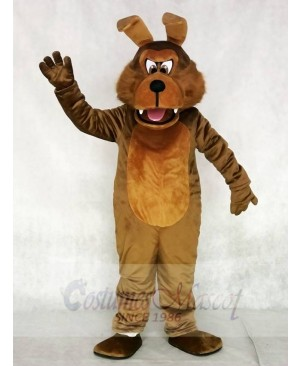Realistic Coyote Wolf Mascot Costumes Animal