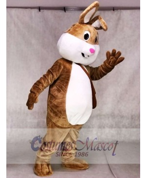 Cute Easter Bunny Rabbit Mascot Costumes Animal
