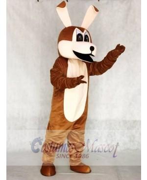 Coyotes Mascot Adult Costumes Animal
