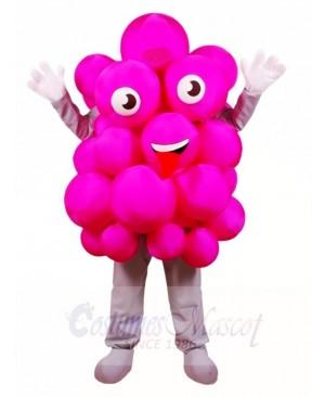 Pink Grapes Mascot Costumes Fruit