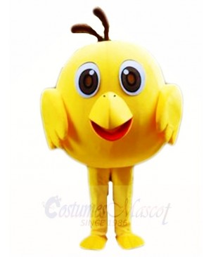 Yellow Chick Mascot Costumes Poultry