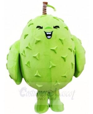 Durian Mascot Costumes Tropical Fruit