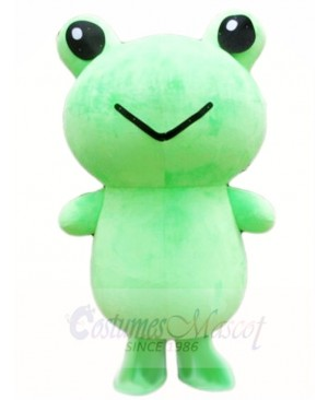 Frog Mascot Costumes Animal