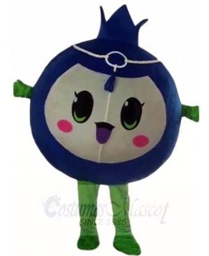 Blueberry Mascot Costumes Fruit