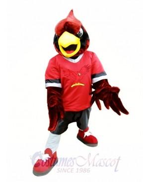 Red Eagle Hawk Mascot Costume College Mascot Costumes