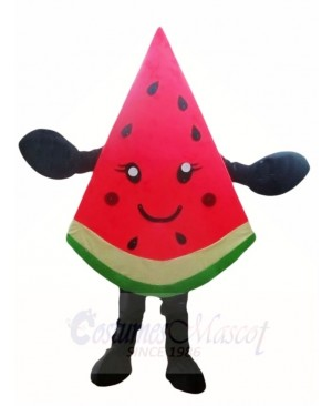 Watermelon Slice Mascot Costumes Fruit