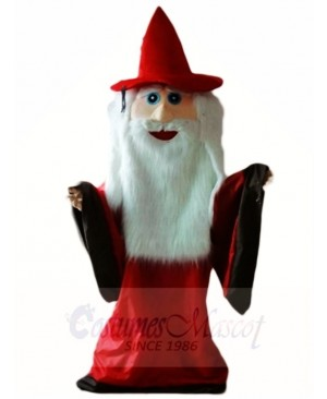 Wizard Magician Mascot Costumes Halloween