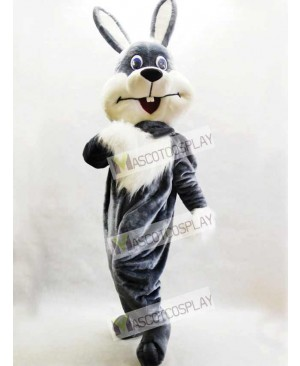 Gray Bunny Easter Rabbit Hare Mascot Costume