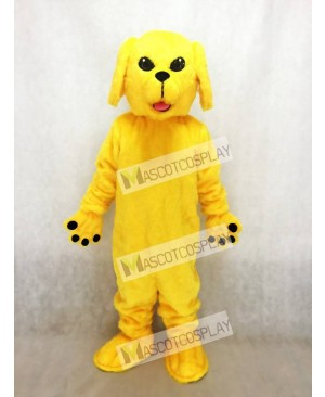 Cute Golden Lab Dog Mascot Costume