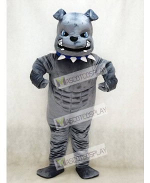 New Blue Eyes Grey Bulldog Mascot Costume