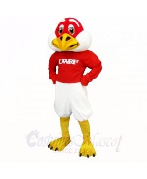 Red and White Freddie Falcon Mascot Costumes School