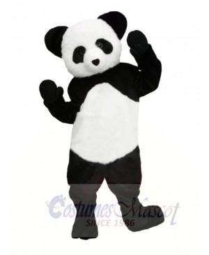 Cute Panda Mascot Costumes