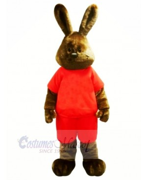 Happy Brown Rabbit Mascot Costumes Adult