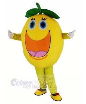 Cute Round Orange Mascot Costume
