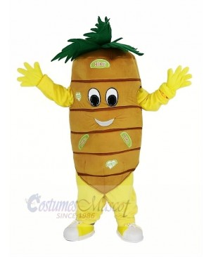 Orange Carrot Vegetable Mascot Costume Cartoon