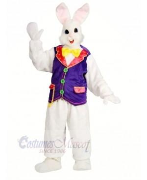 Rabbit with Purple Vest Mascot Costumes Bunny Animal