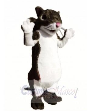 Cute Lightweight Squirrel Mascot Costumes