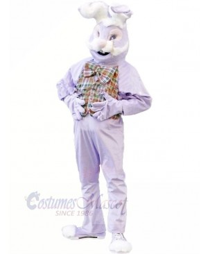 Purple Bunny Rabbit Mascot Costume Cartoon