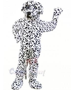 Strong Dalmatian Dog Mascot Costumes Animal