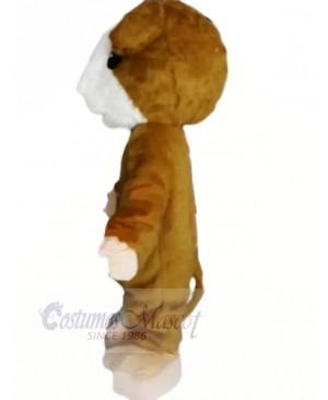 Lovely Brown Hamster Mascot Costume Cheap