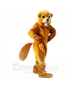 Friendly Yellow Lightweight Beaver Mascot Costumes Adult
