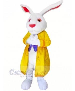 Rabbit with Yellow Jacket Mascot Costumes Animal