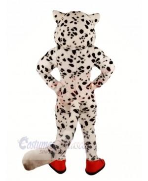 Happy Snow Leopard Mascot Costumes Cartoon