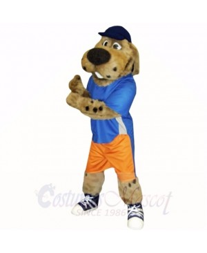 Sport Dog with Blue Hat Mascot Costumes School