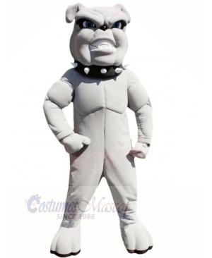 Lightweight Grey Bulldog Mascot Costumes Adult