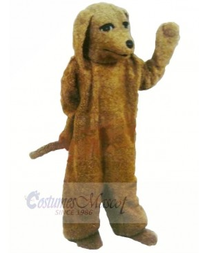 Brown Poodle Dog Mascot Costumes Adult