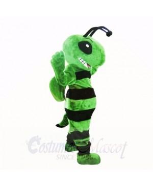 Friendly Green Bee Mascot Costumes Adult
