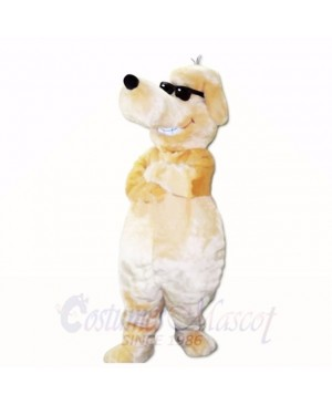 Smiling Sunglasses Dog Mascot Costumes Cartoon